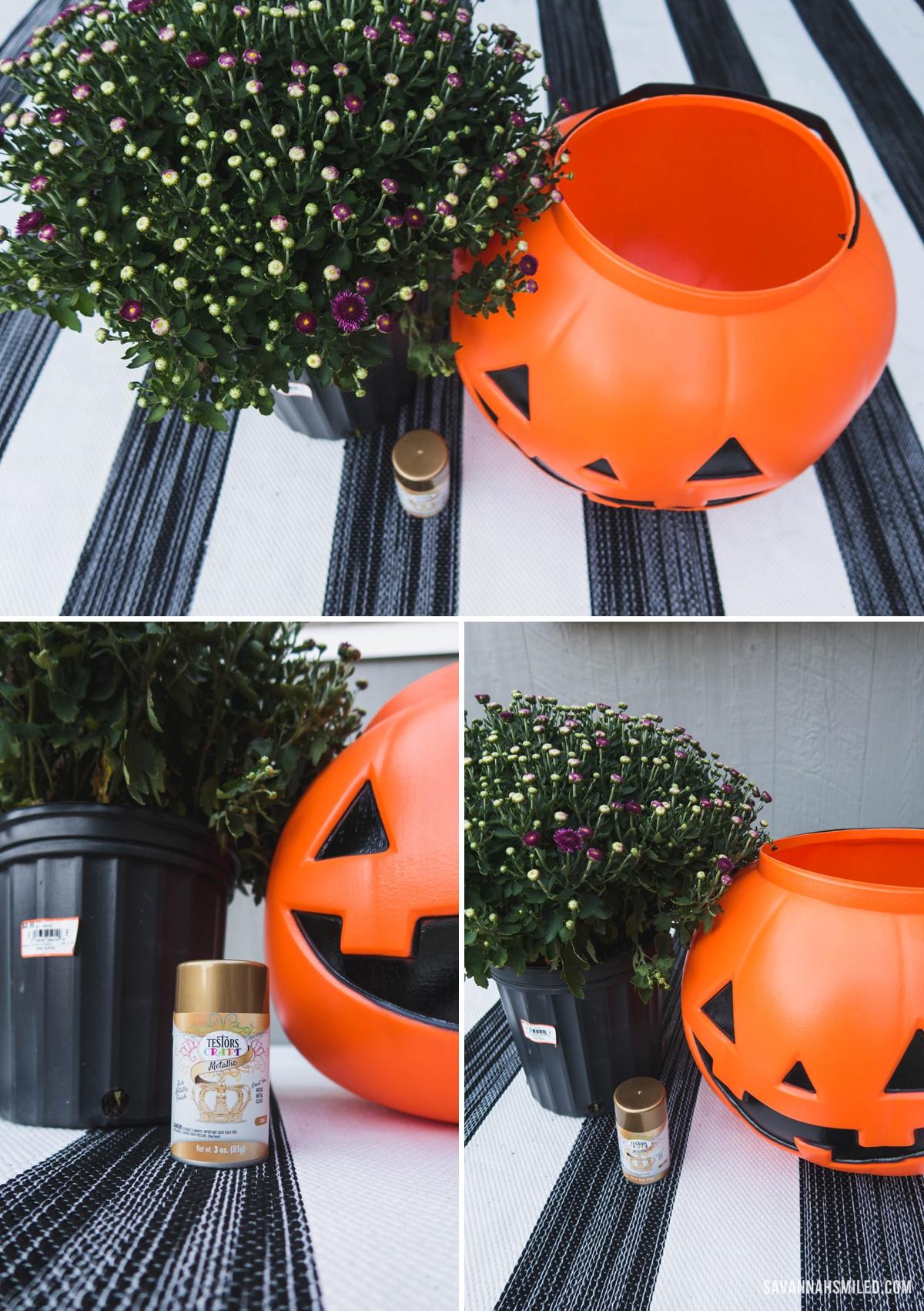 pumpkin-porch-mums-6.jpg