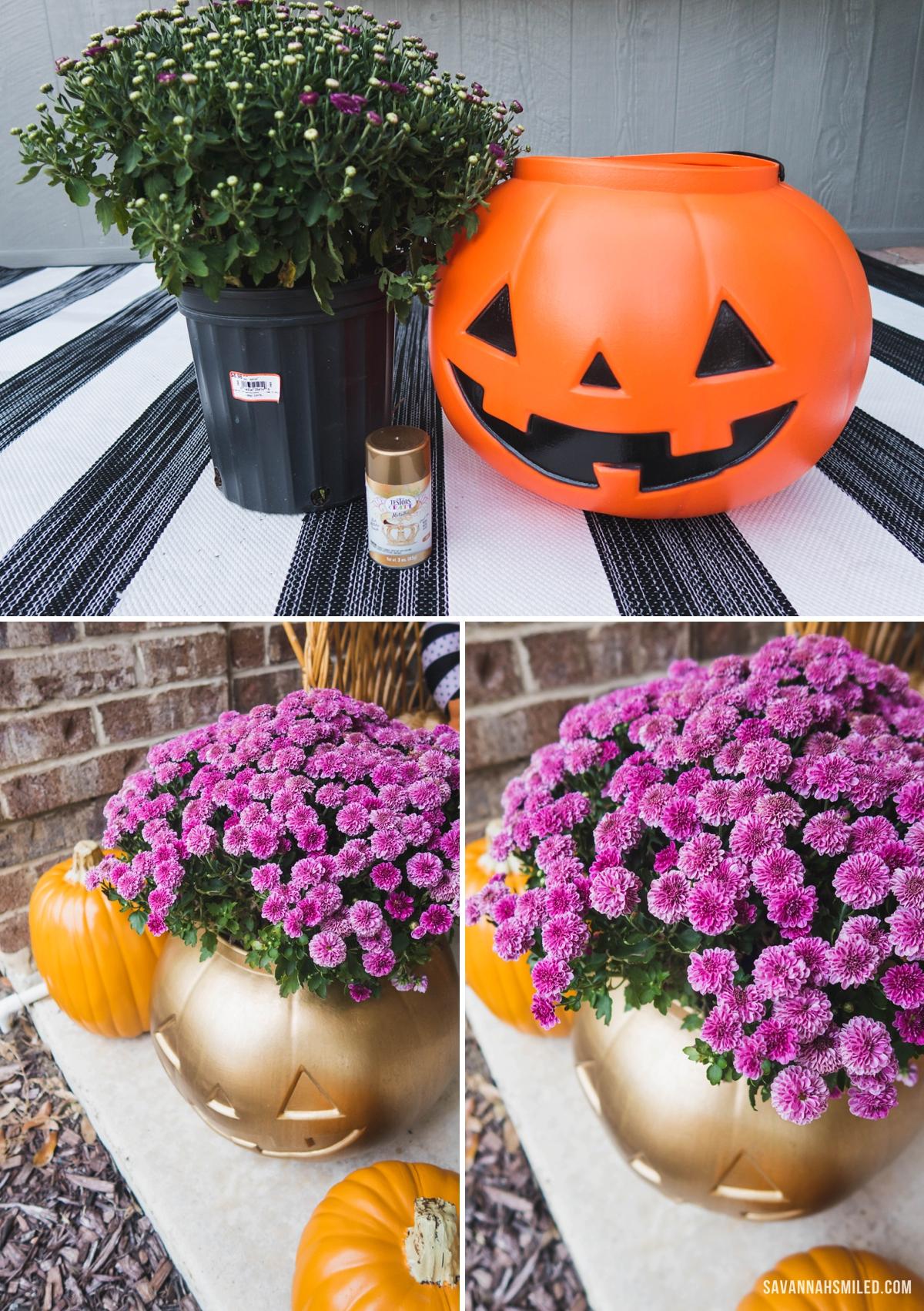 pumpkin-porch-mums-2.jpg