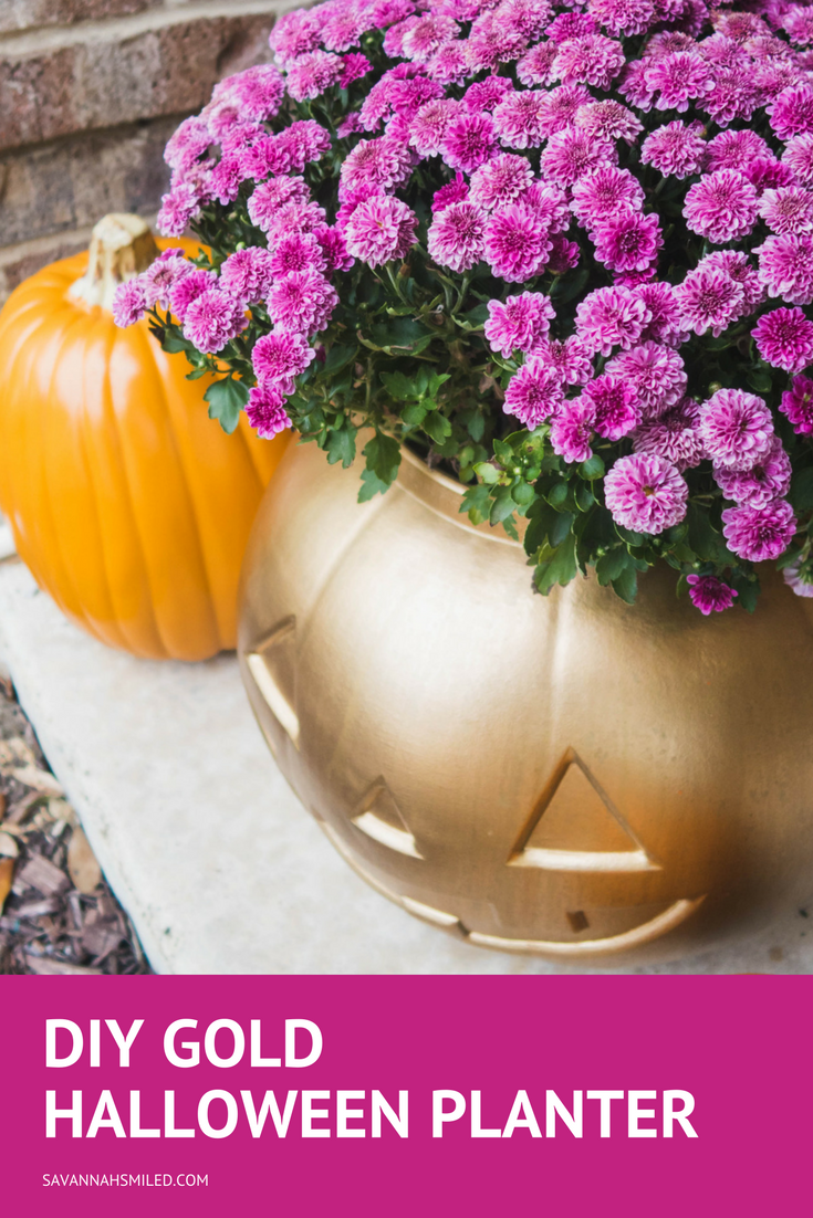 diy-gold-spray-paint-halloween-plant-pot