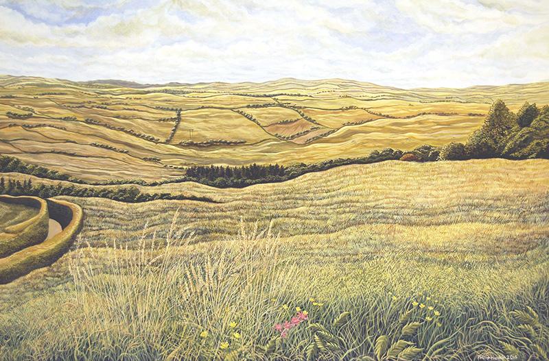 Mountain Meadow - Maes y Mynydd Bach  625mm x 905mm, acrylic - acrylig   Price -  Pris  £4,995