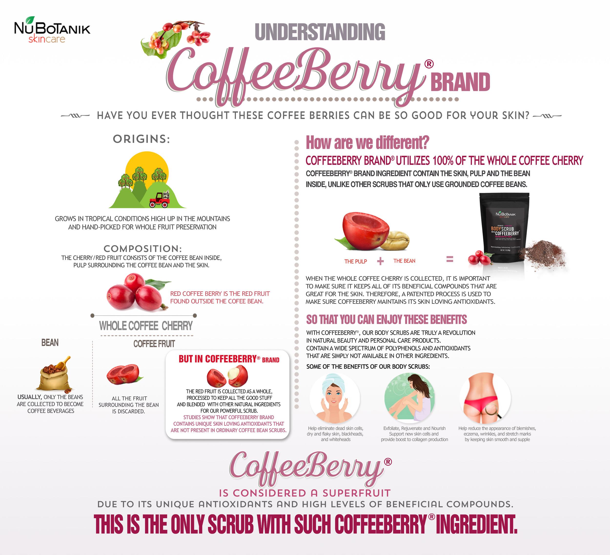 CoffeeBerry Brand Infographics