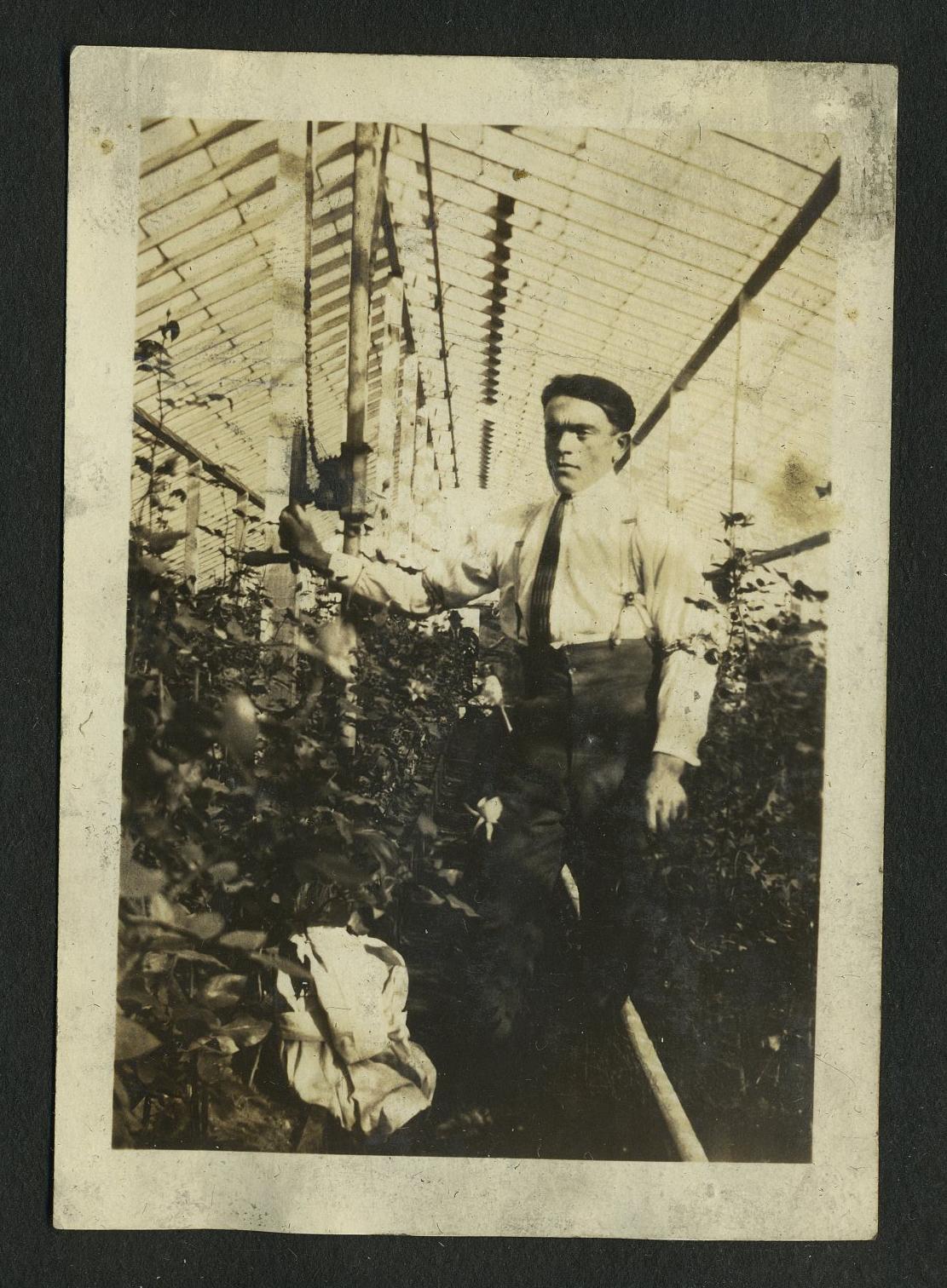 Giabbatta in Greenhouse.jpg