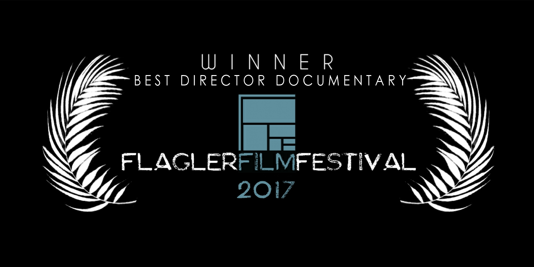 2017 Best Director Documentary.jpg