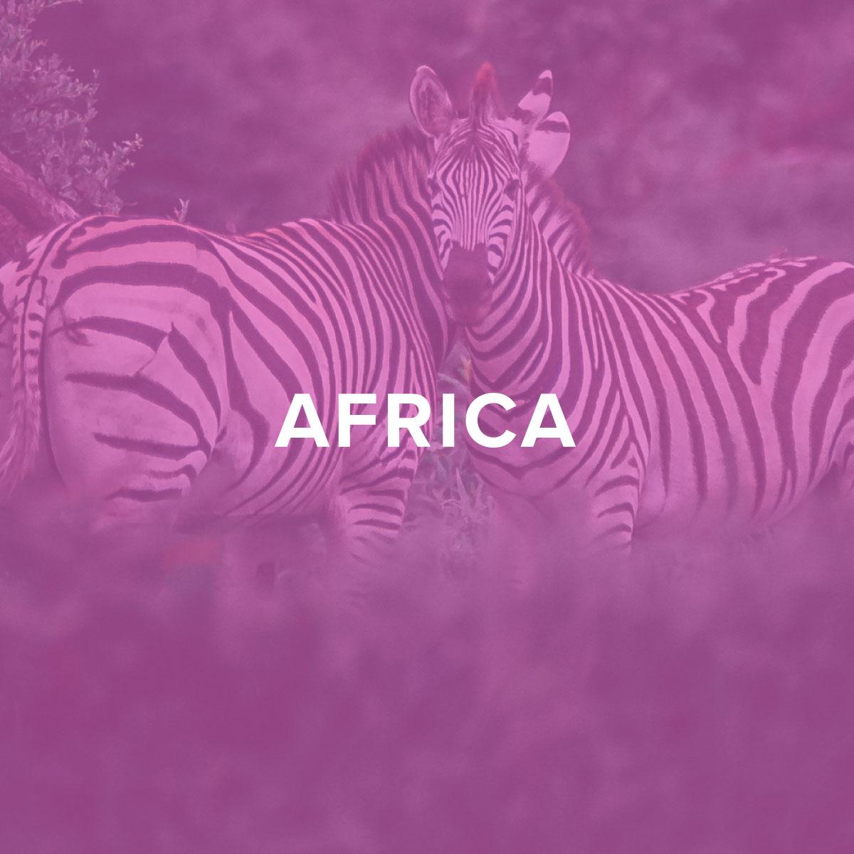 Travel-Guide-Africa.jpg