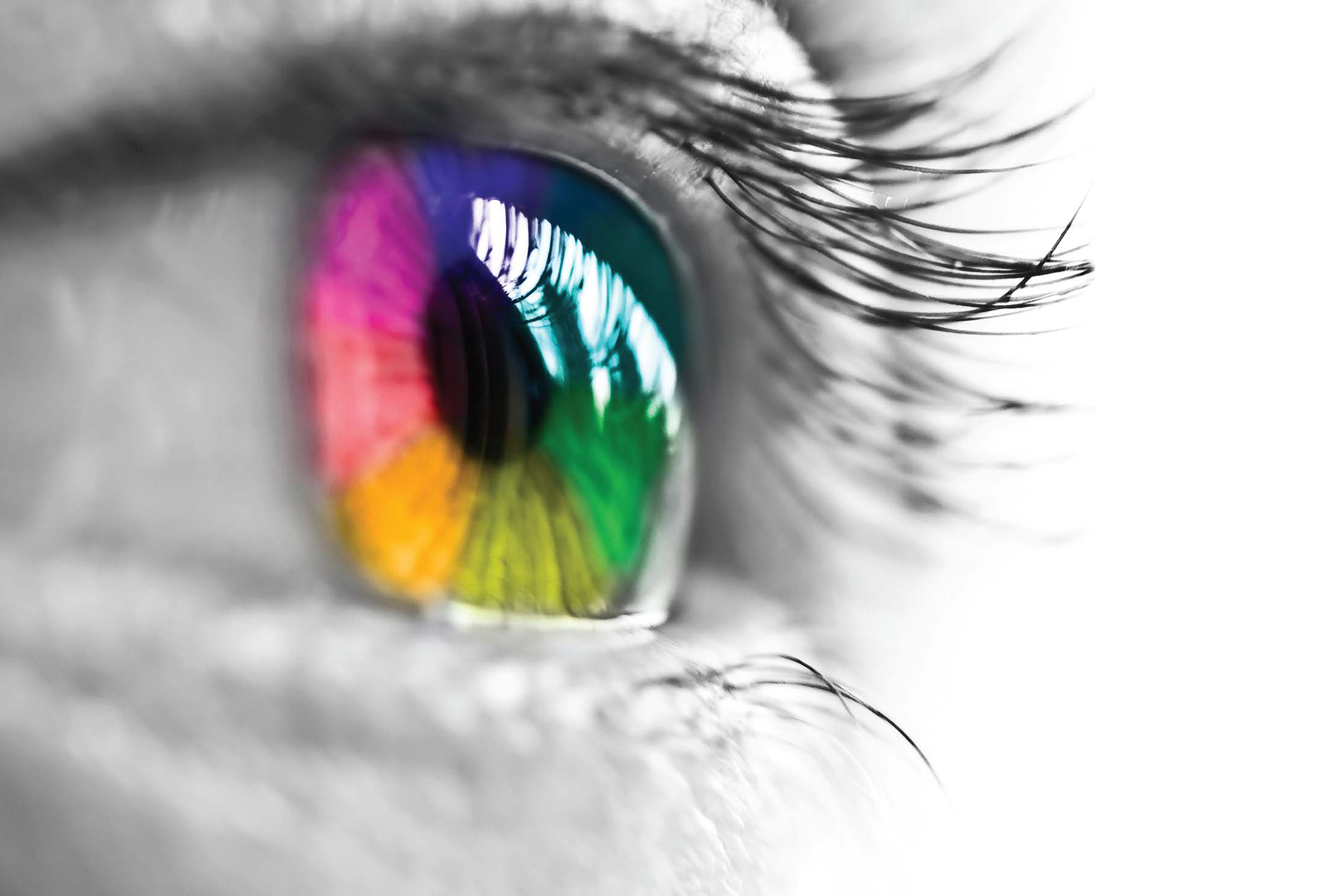 Fresh Eyes Evaluations - Custom onsite consultation yielding innovative and effective solutions.