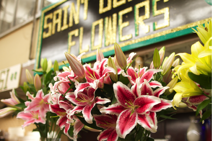 _30_Saint-Germain-Flowers_03.png