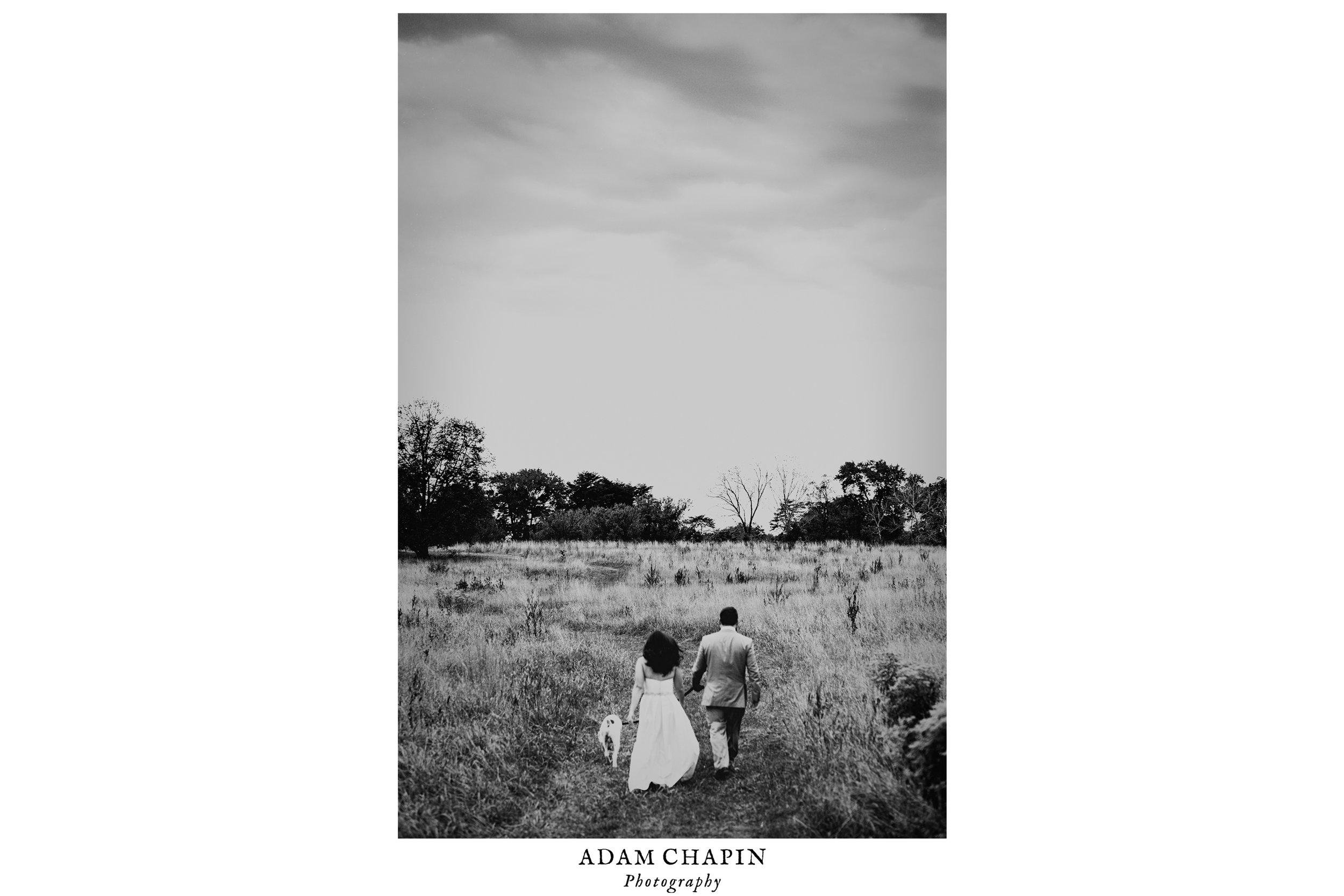 national-arboretum-washington-dc-wedding-photography.jpg