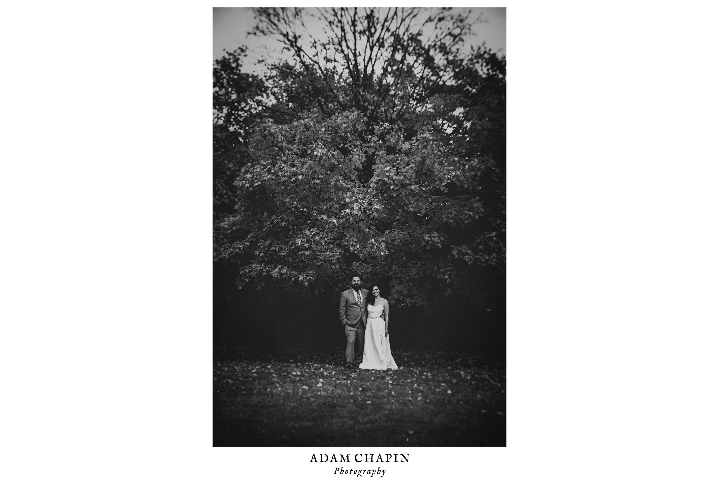 national-arboretum-wedding-photo.jpg