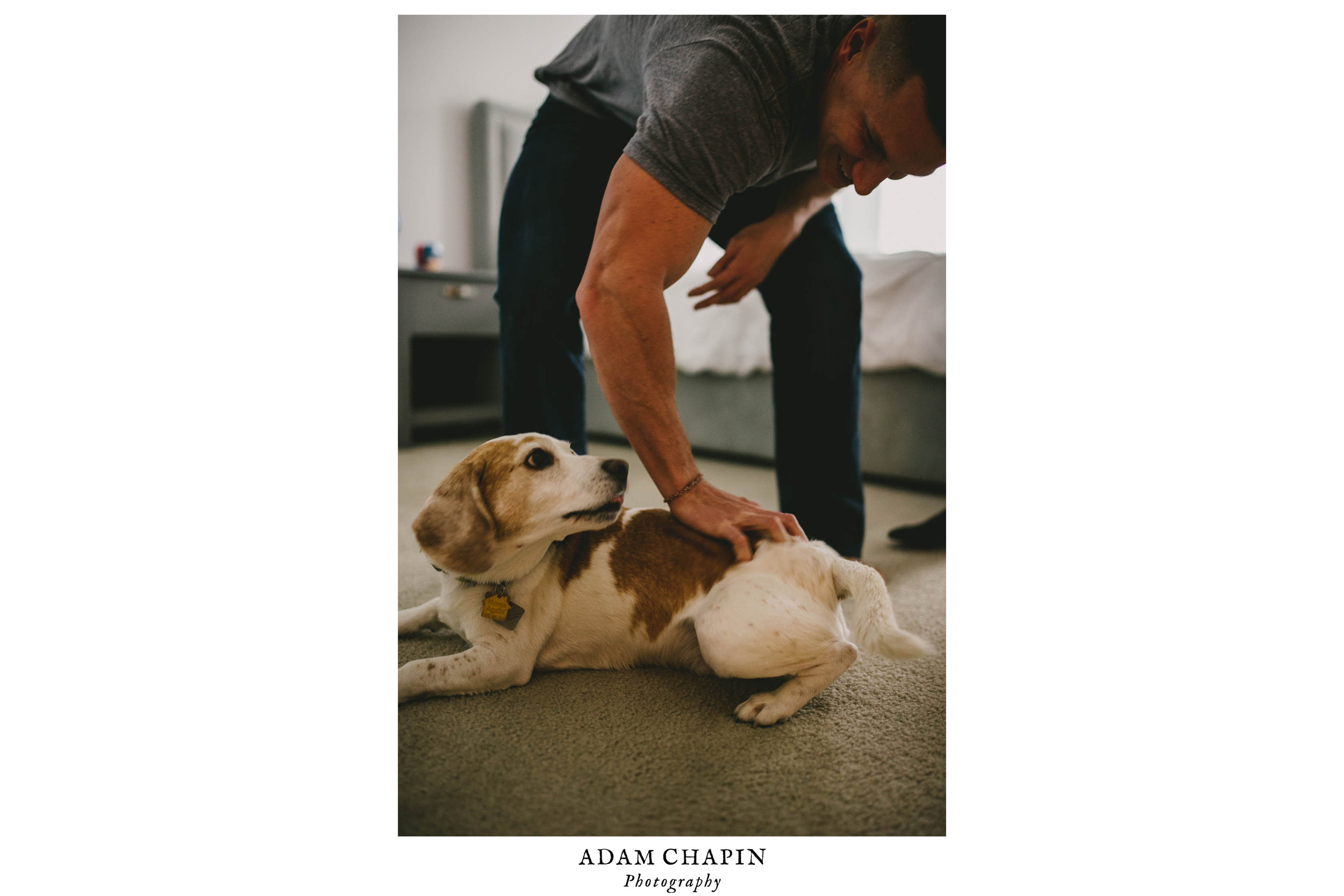 dog loving engagement photos raleigh nc