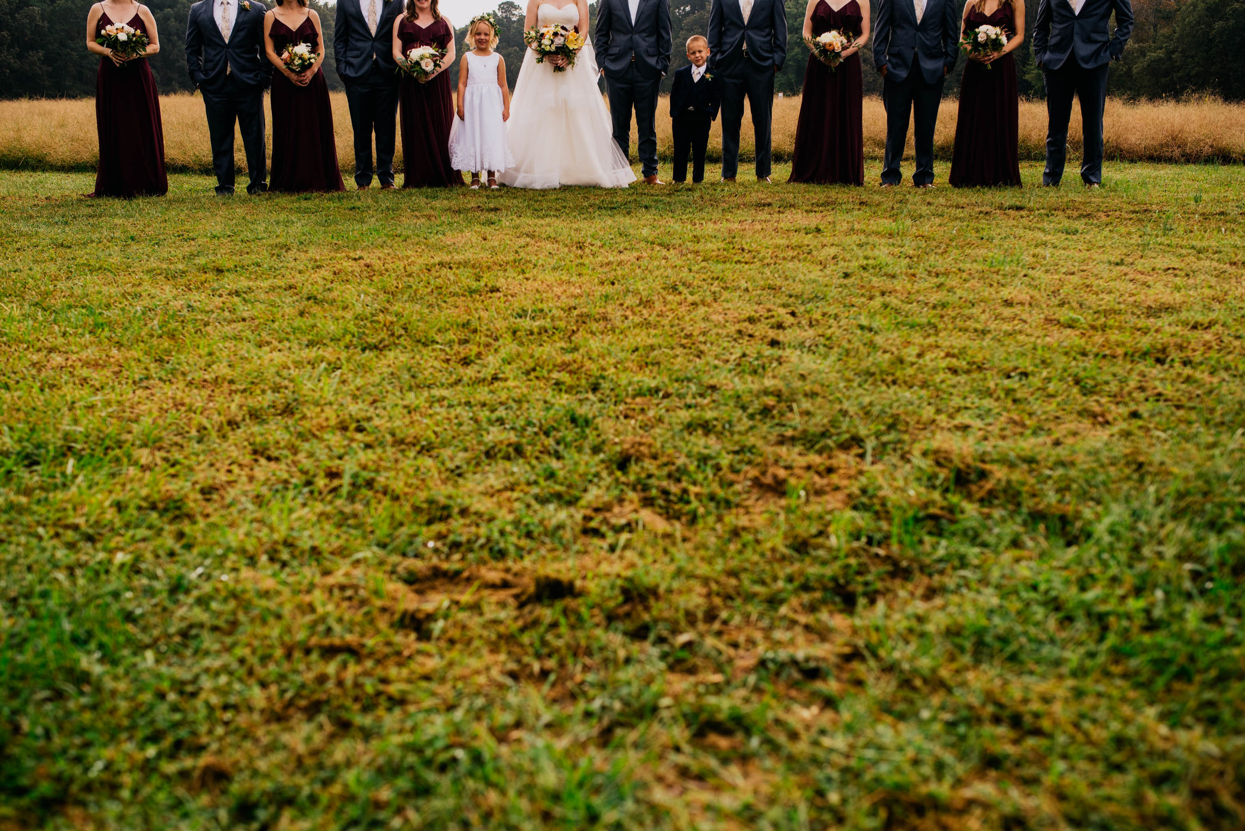 a cropped photo of the entire wedding party to show the flower girl and the ring bearer