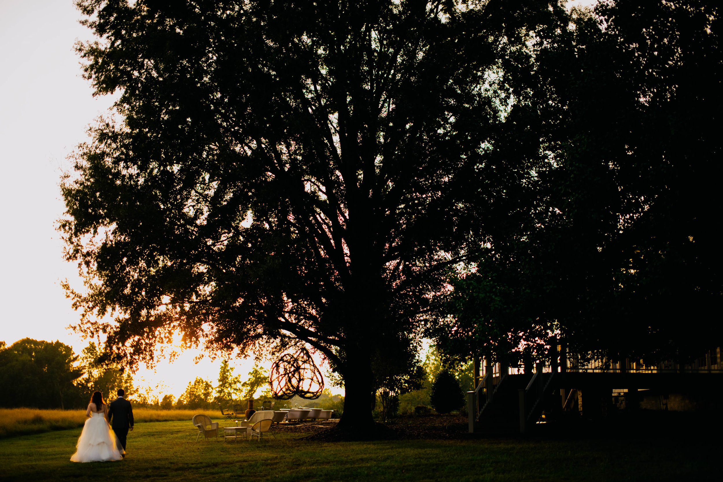 bride and groom walking under a huge oak tree during sunset