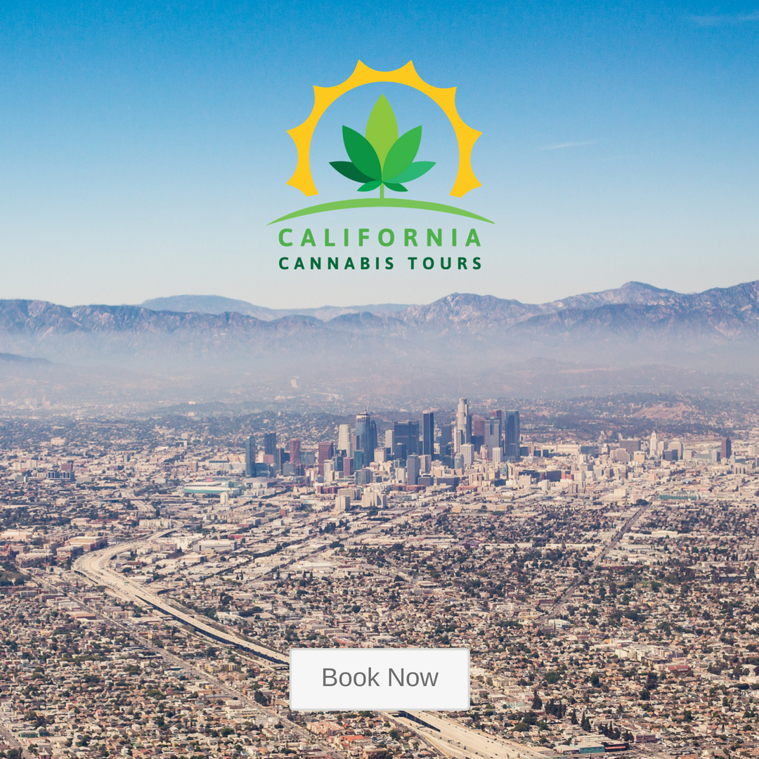 california cannabis tours website relaunch.png