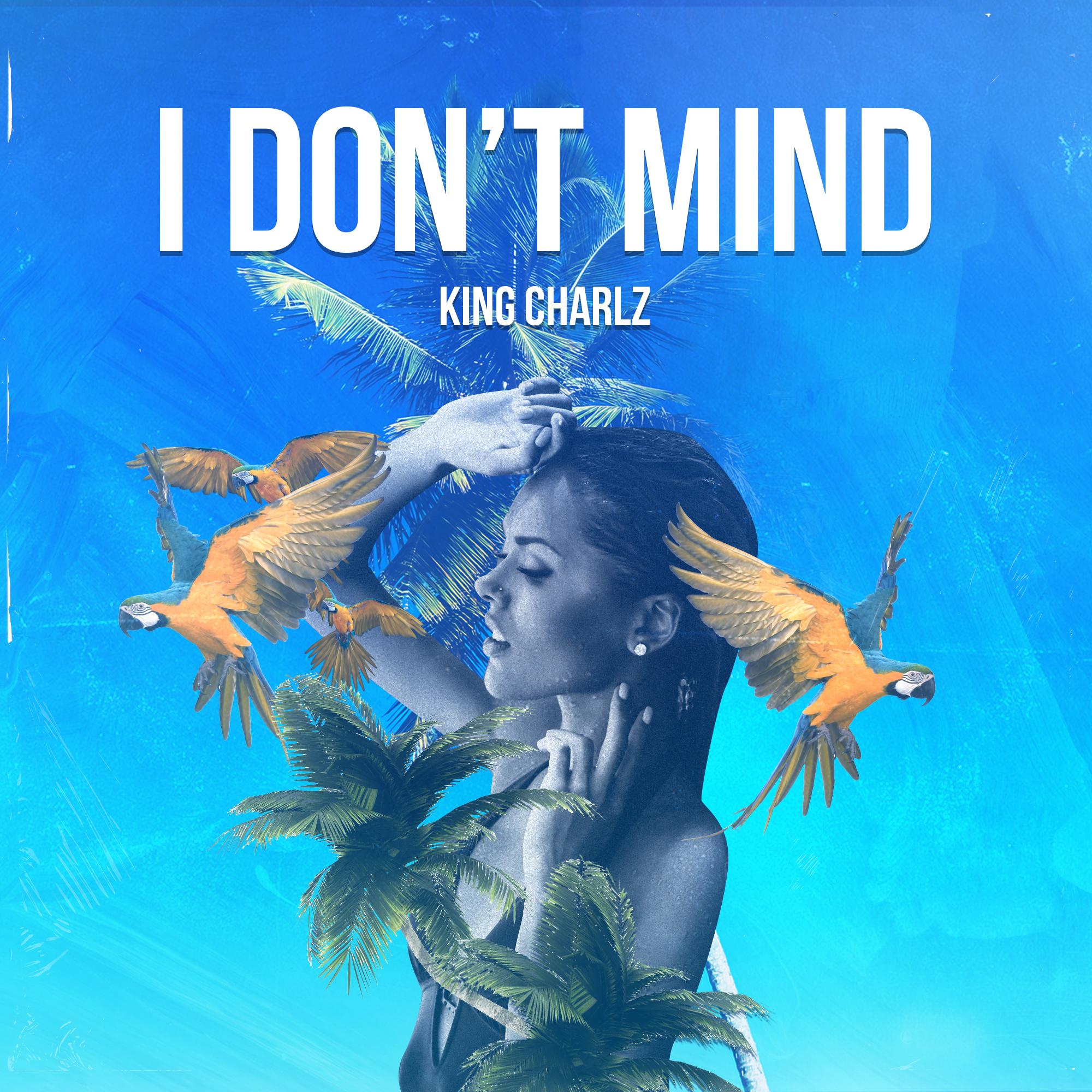 I Don't Mind v2.png