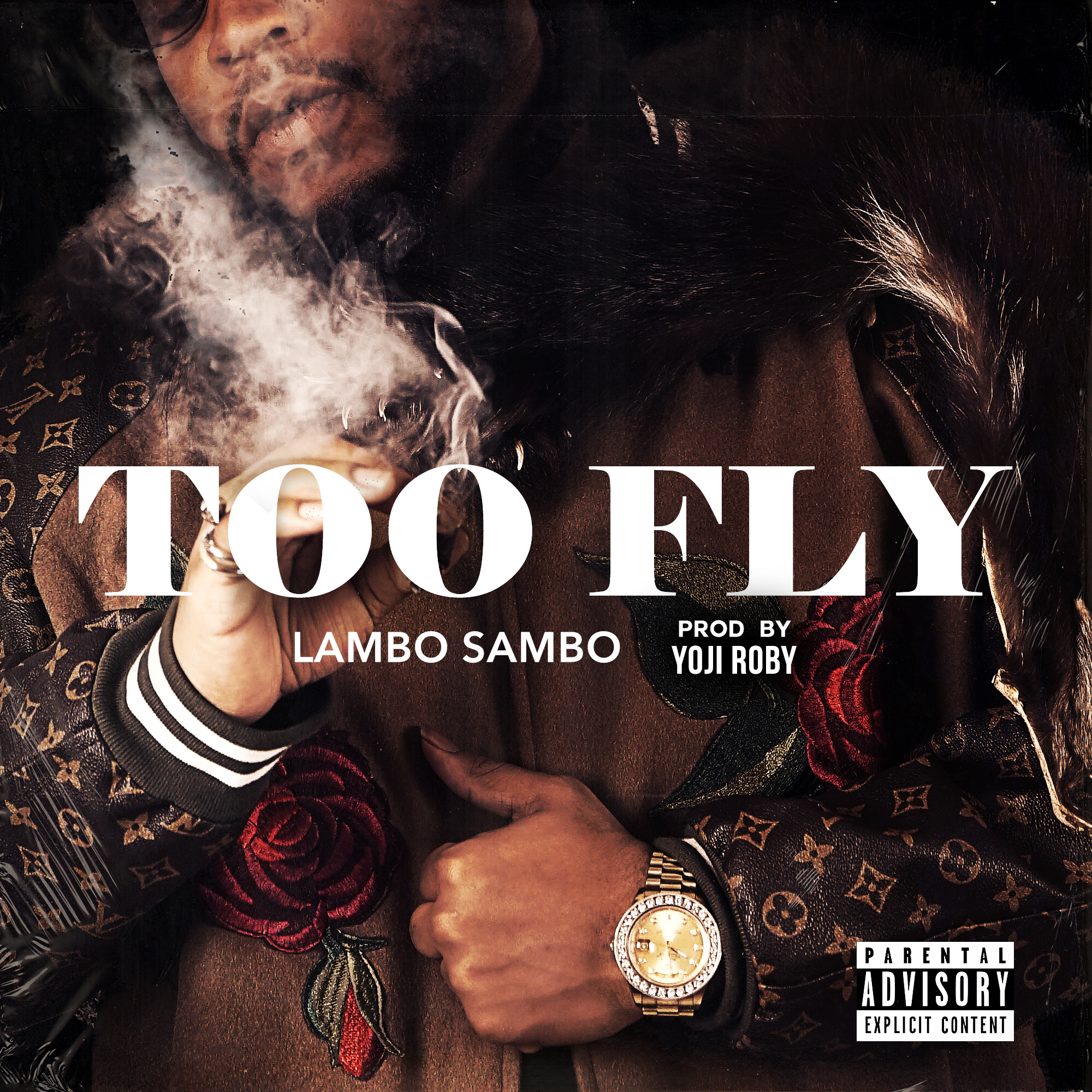 Too Fly v2.png
