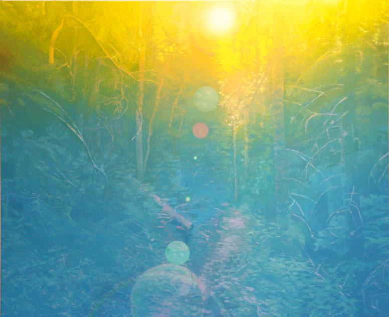'forest-path'-Oil-on-linen-44'x49'-2009.jpg