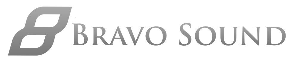 Bravo+Logo+transparent.jpg
