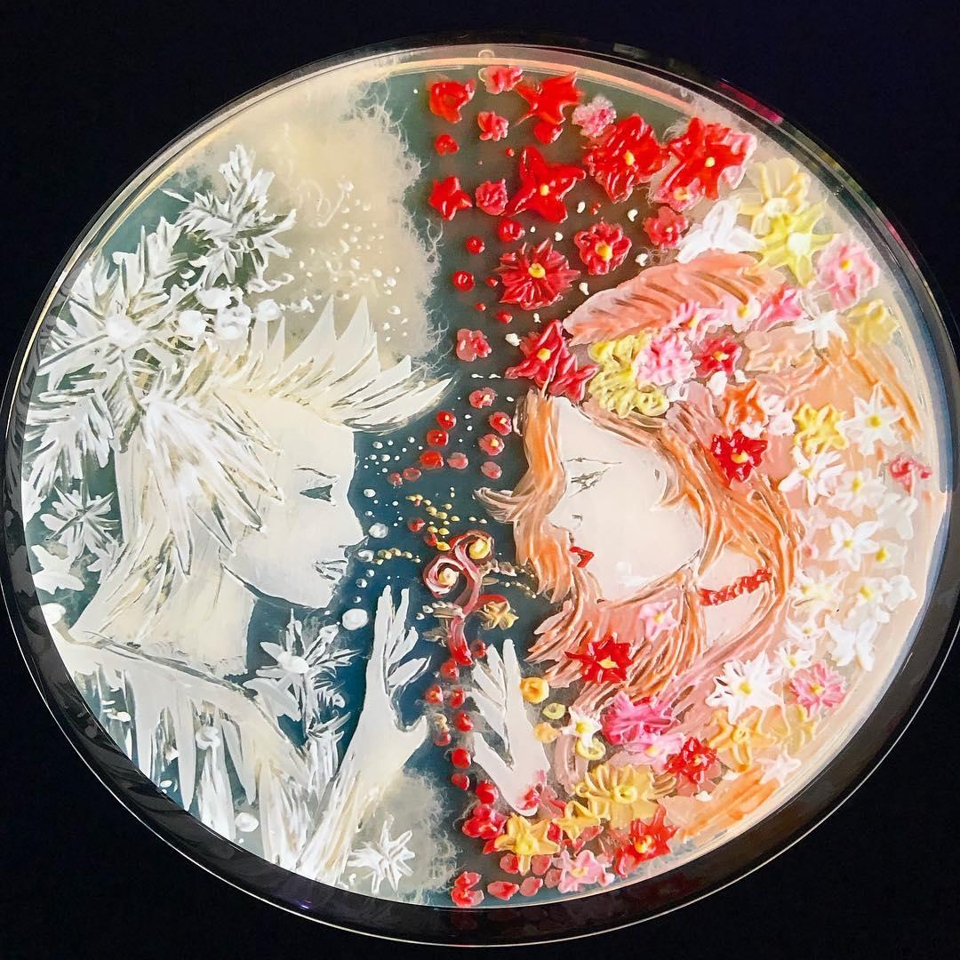 Microbe painting! Pic: @lscafterdark