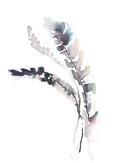 featherstrand1online.jpg