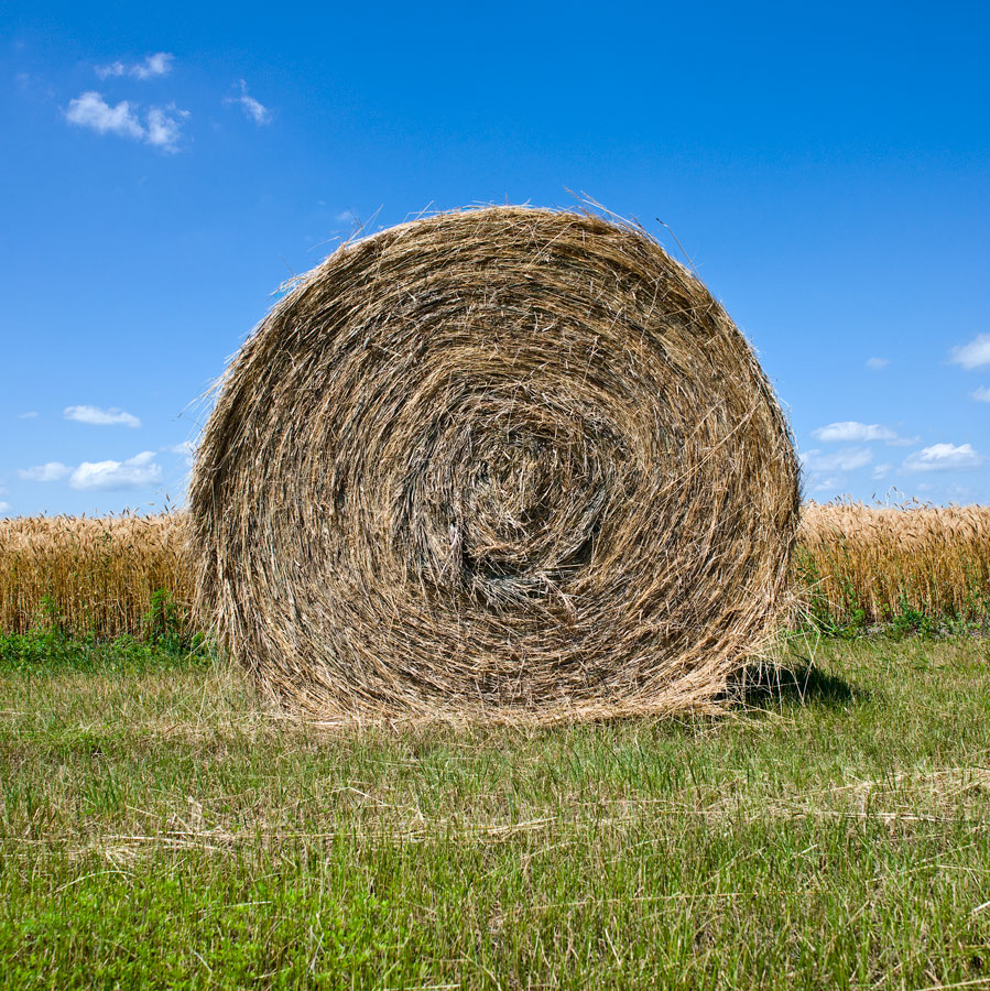 """ Hay Bale, SD """