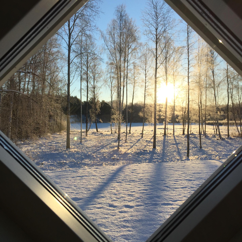 Dagens utsikt från mitt fönster