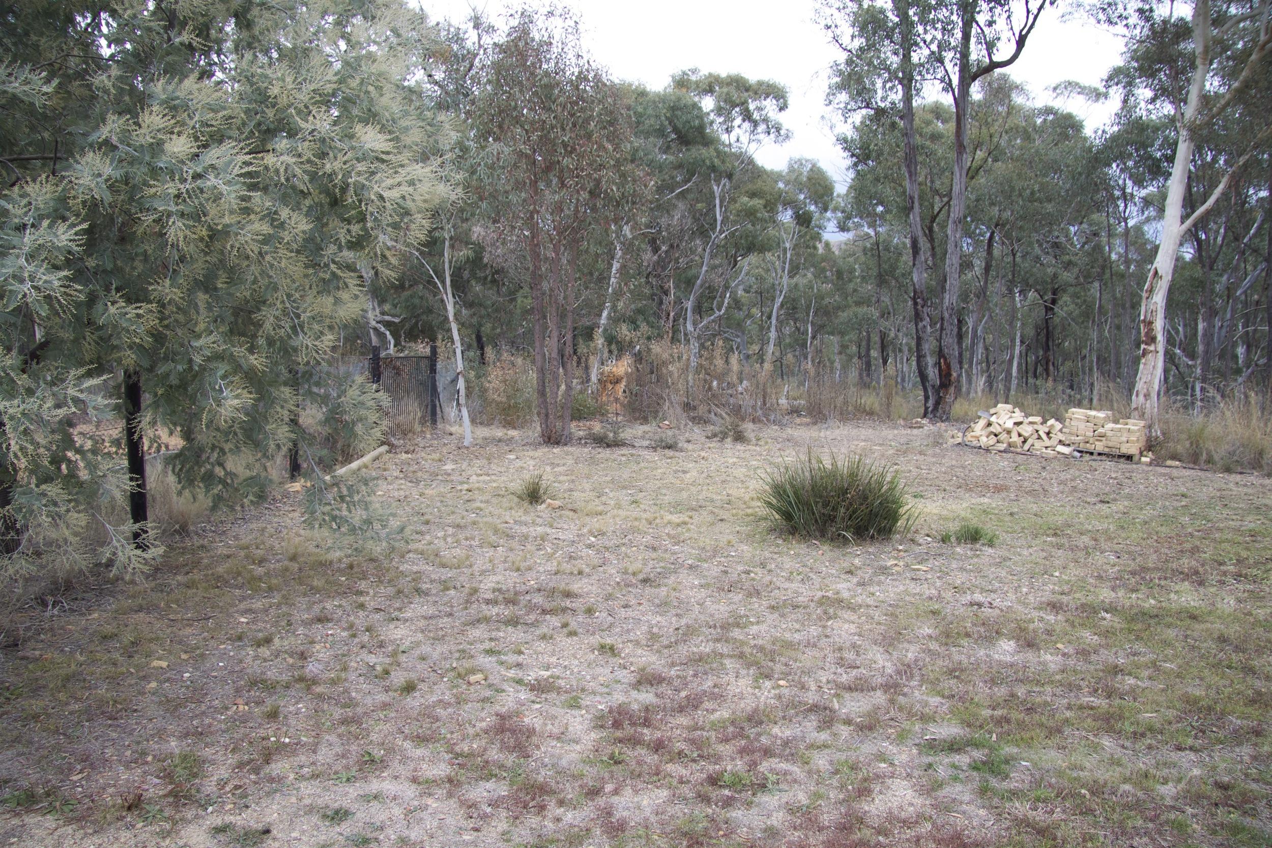 Backyard 1a.jpg