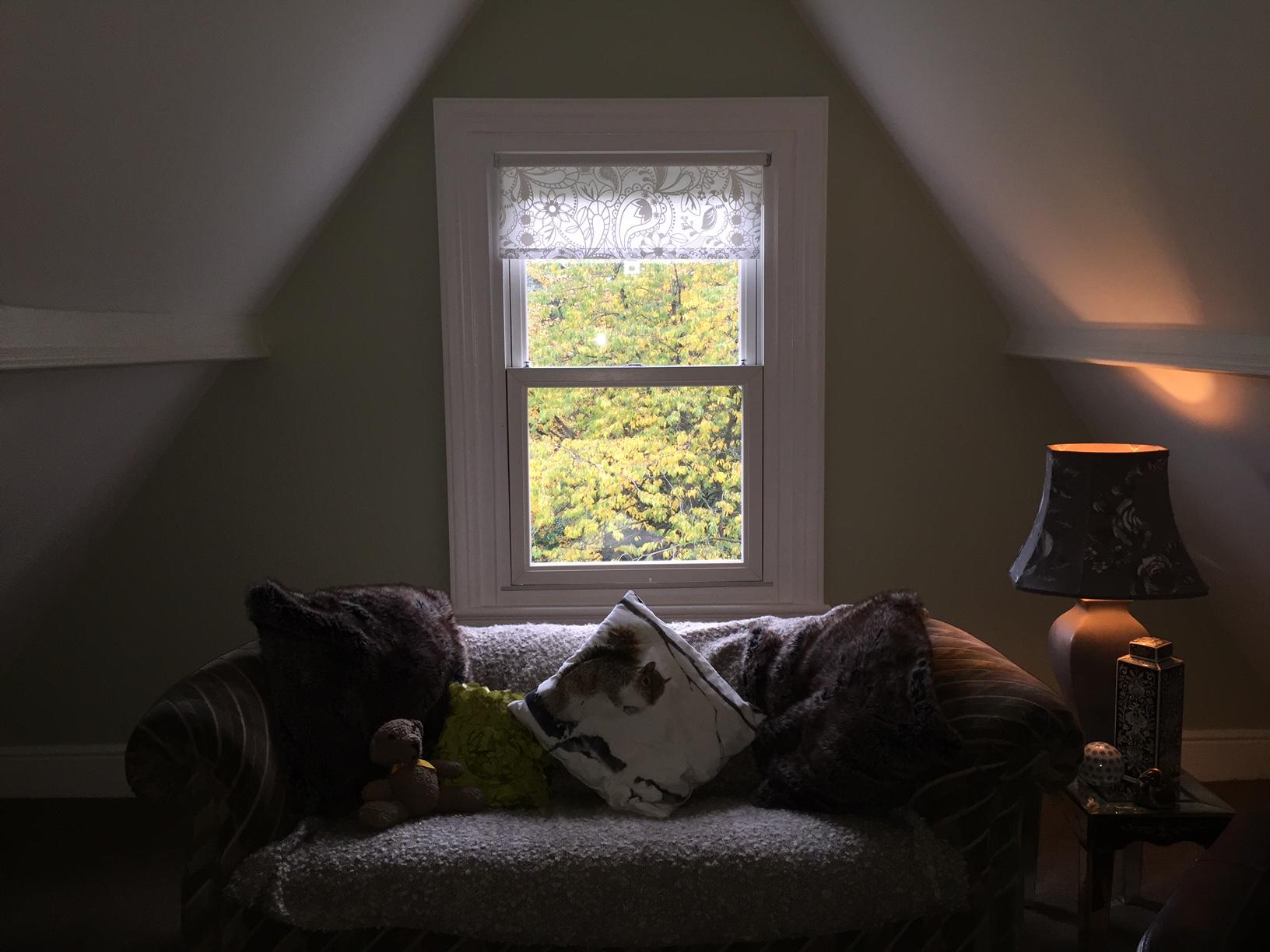 sash window coventry liselot blinds