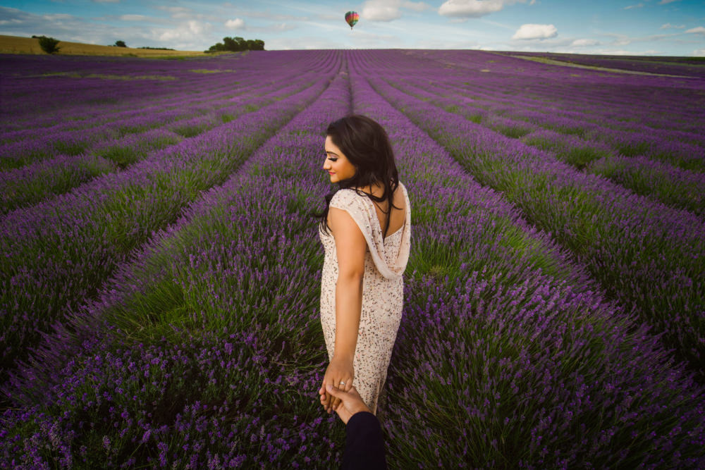 0. Lavender Field Hitchin_2.jpg