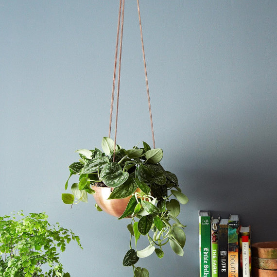 Hanging Planter Vessel from  INSEK DESIGN