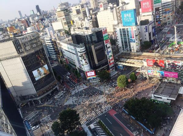 Birds Eye View of Shibuya Station Crossing
