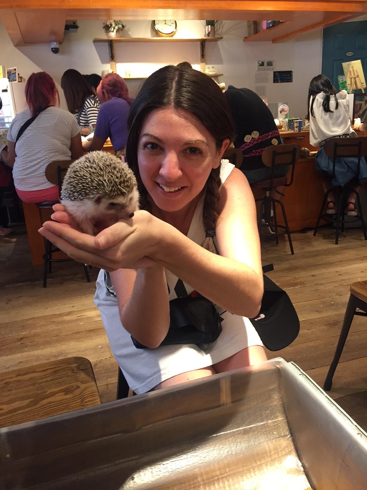 Harry Hedgehog Cafe - Harajuku