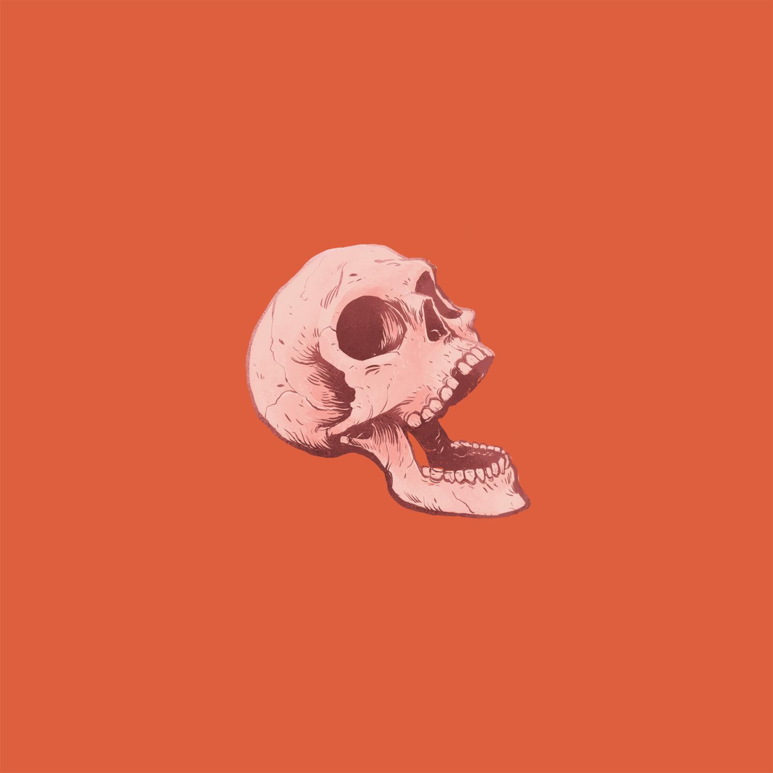 det skøre skelet -