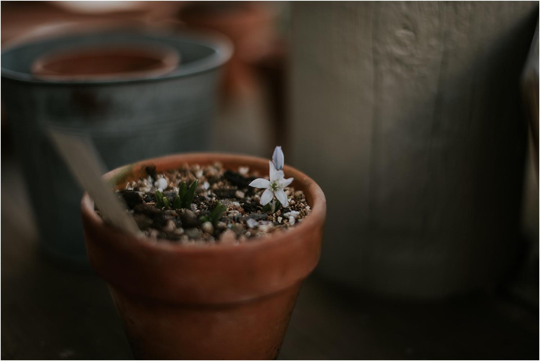 Secret-Herb-Garden-wedding-photographer_0108.jpg