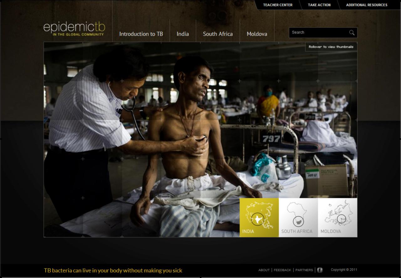 Fighting-Tuberculosis-Website-Screenshot.jpg