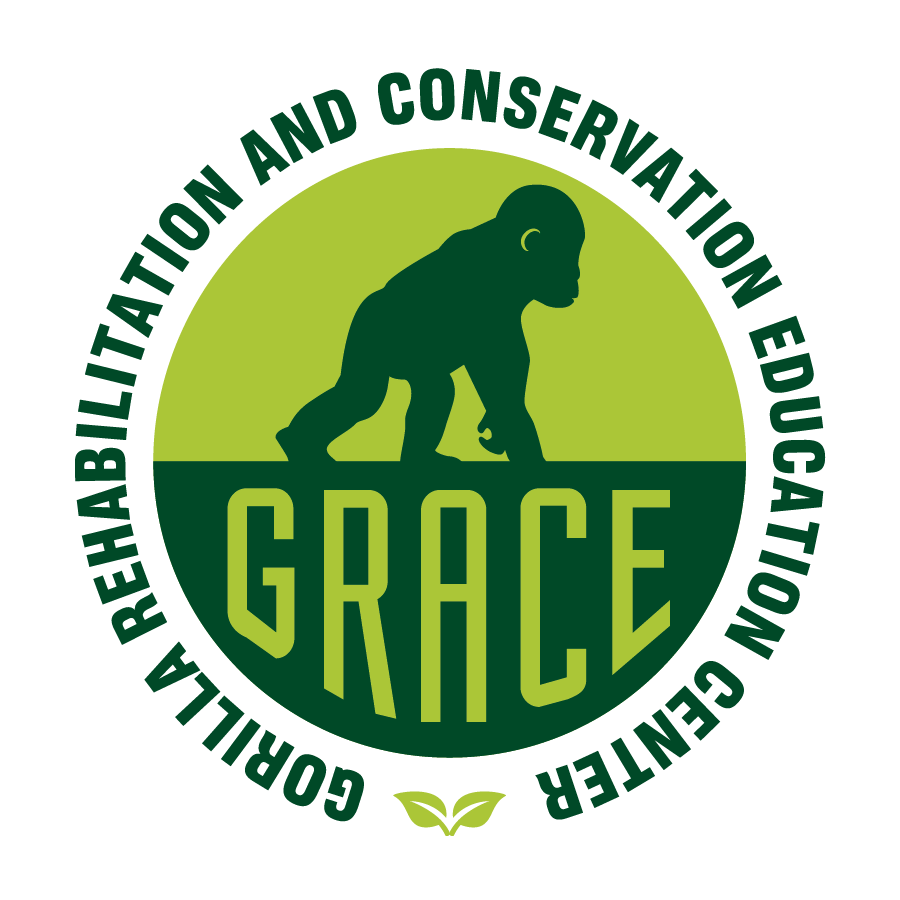 GRACE_logo_Green copy.png