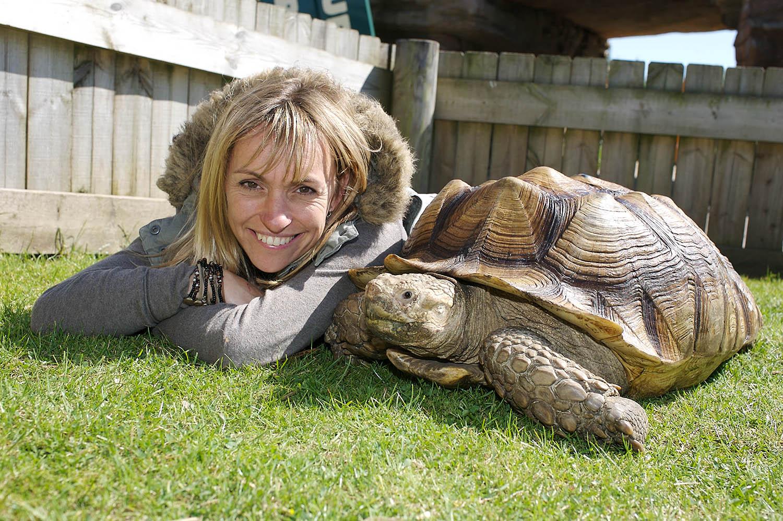 Michaela's Animal Road TripL.jpg