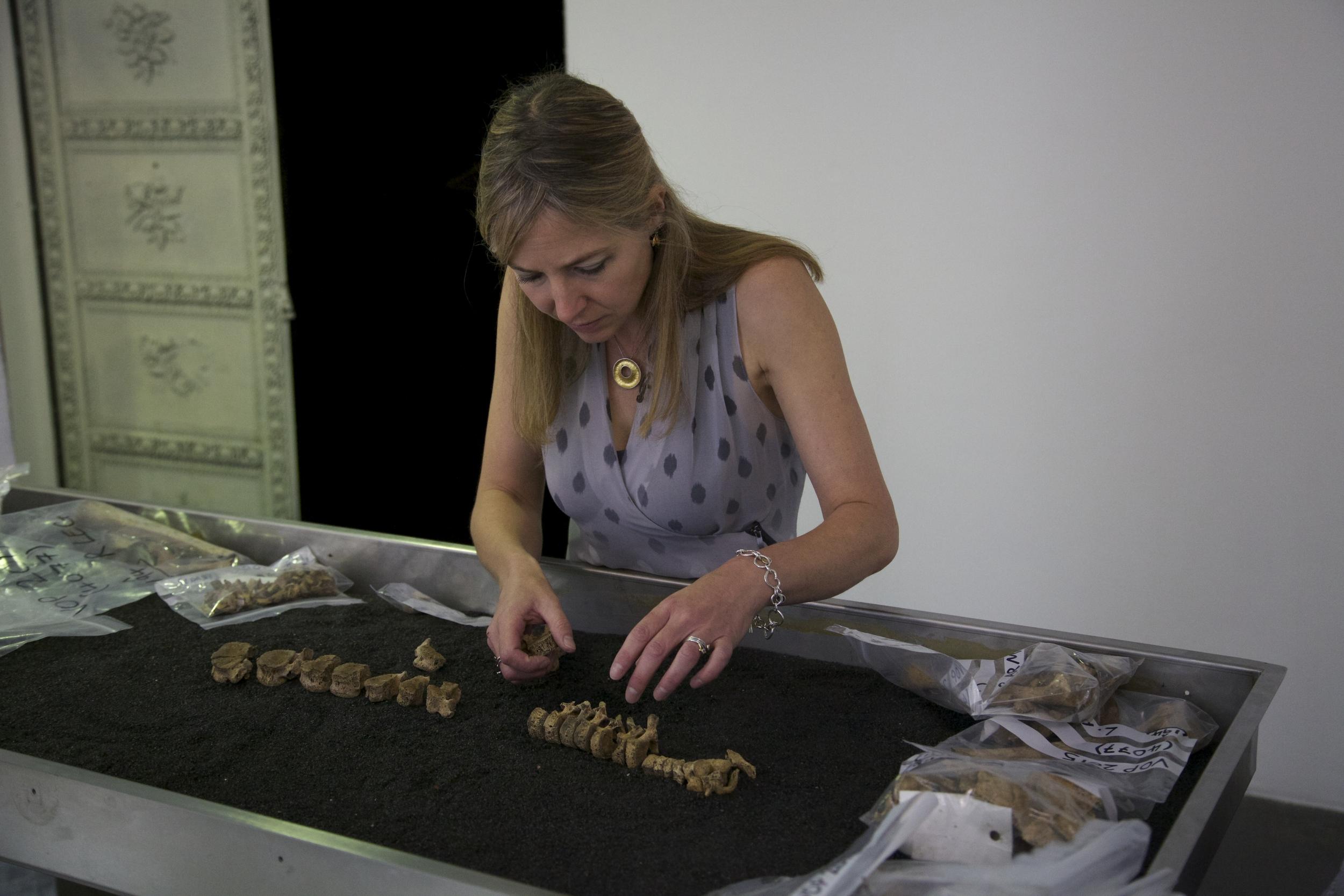 Digging for Britian copyright Alice Roberts.JPG