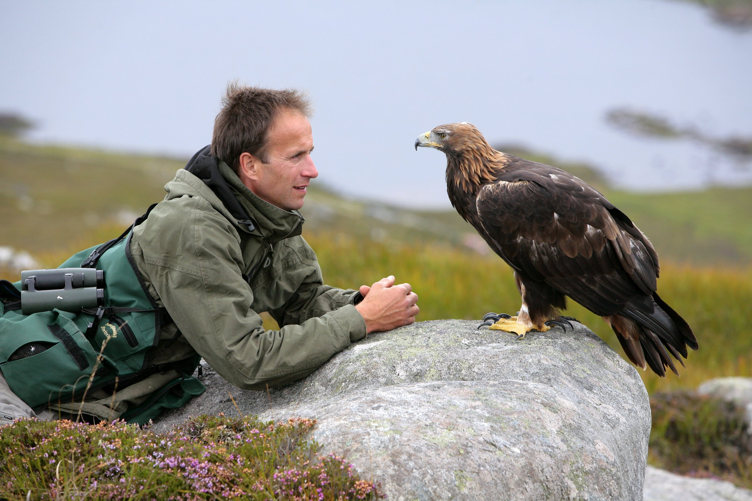 John Waters copyright - Lloyd and Tilly Golden Eagle.jpg