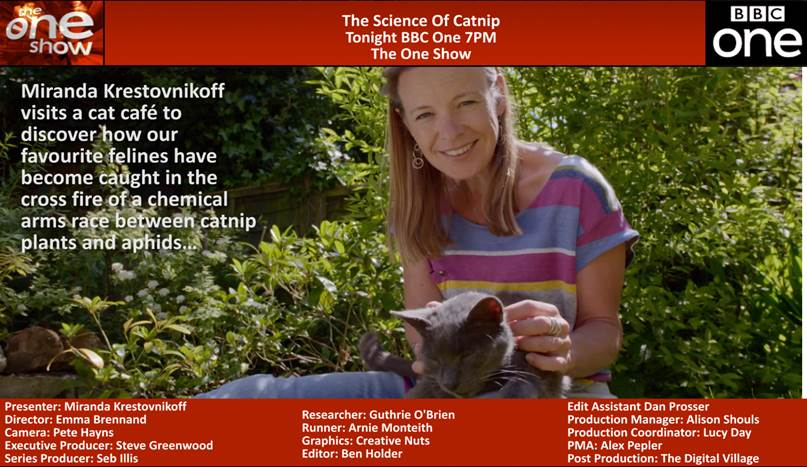Science of Catnip The One Show.jpg