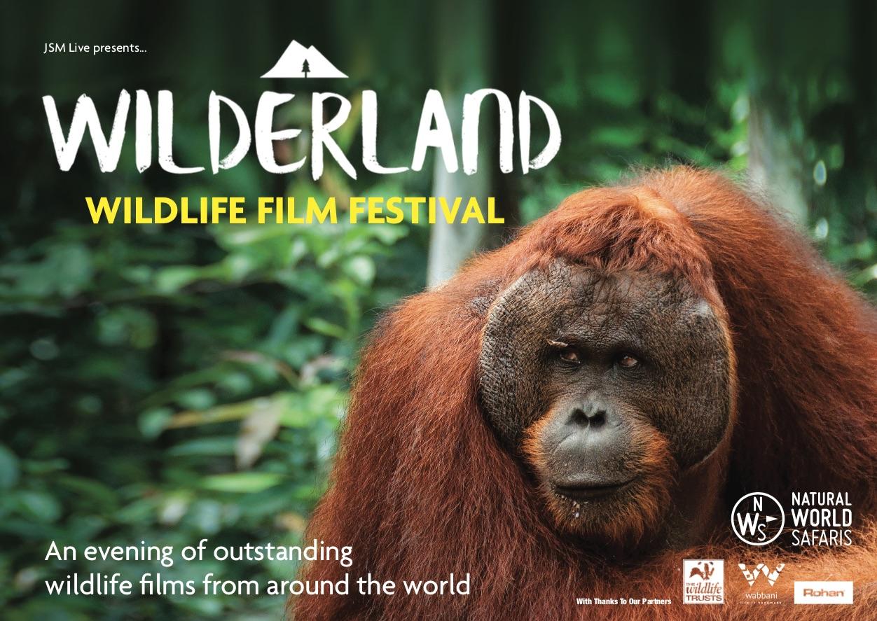 www.wilderlandfestival.com