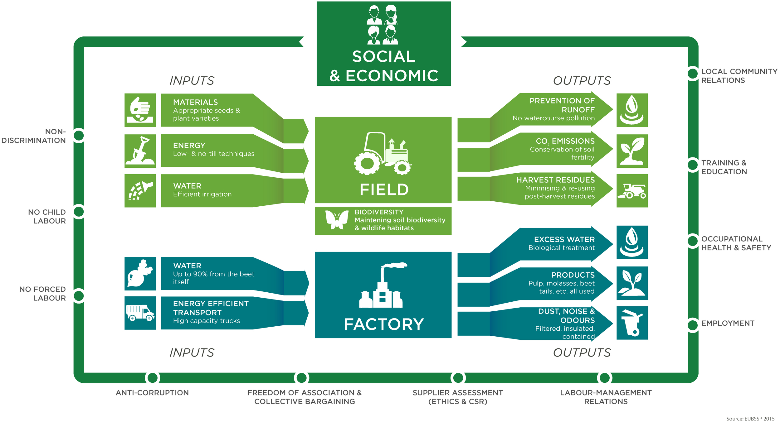 Sustainability from field to factory.jpg