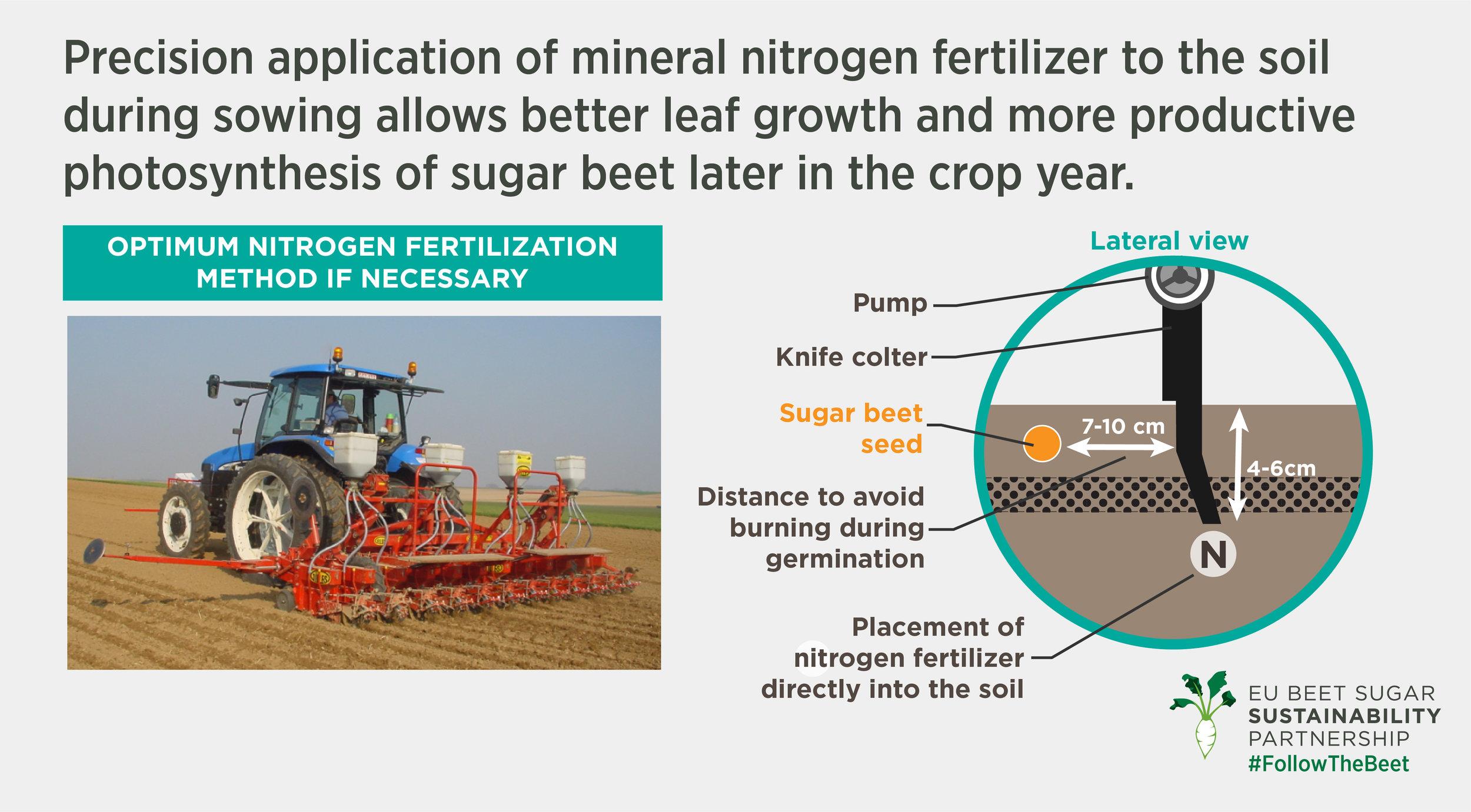 Mineral Nitrogen - website version.jpg