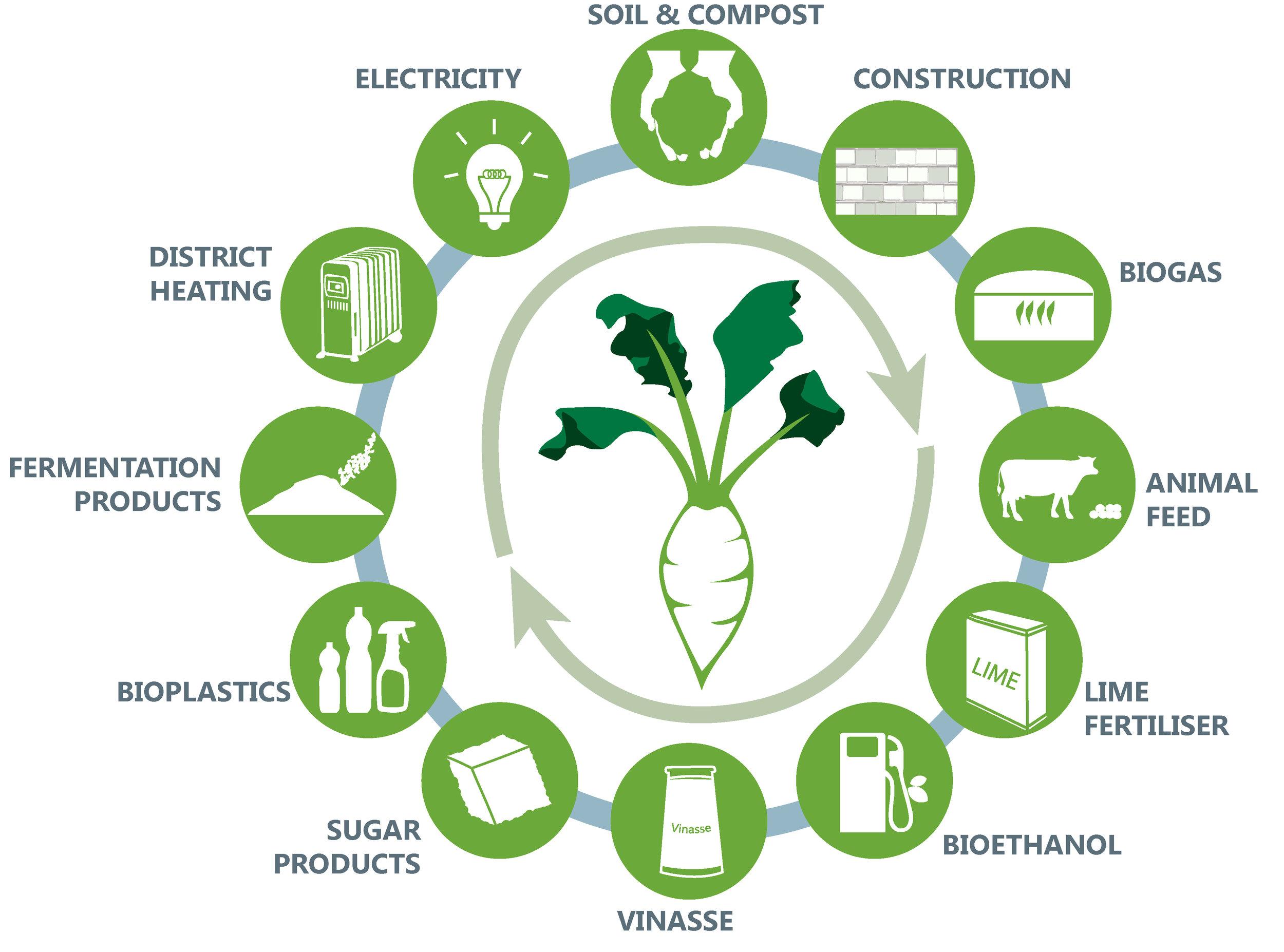 circular economy v2 ONLINE.jpg