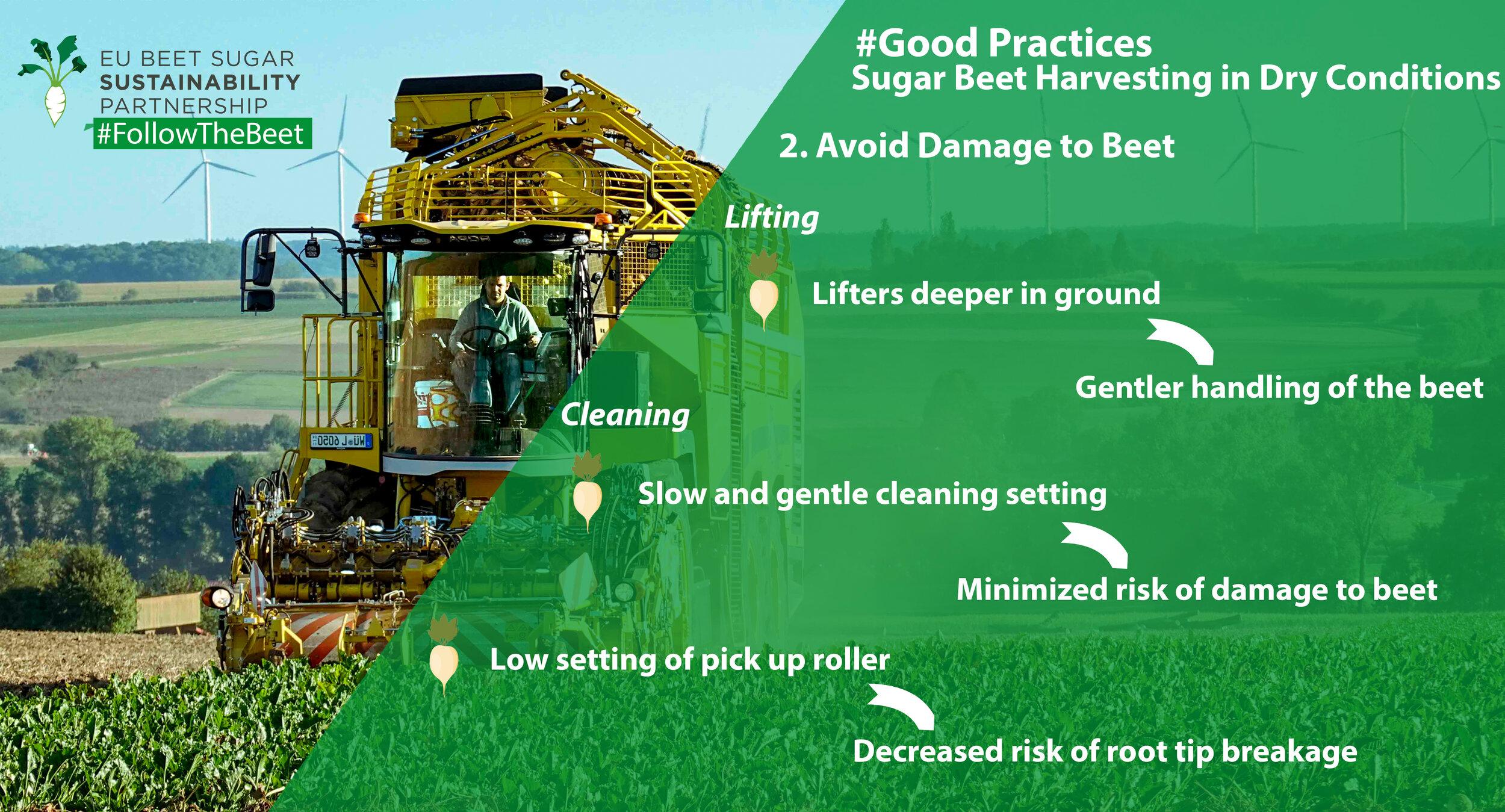 2019-ß9-19  Tweet_2 GoodPractices Harvest Beet Damage.jpg