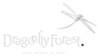 DragonflyForest_LogoNoOutli copy.png