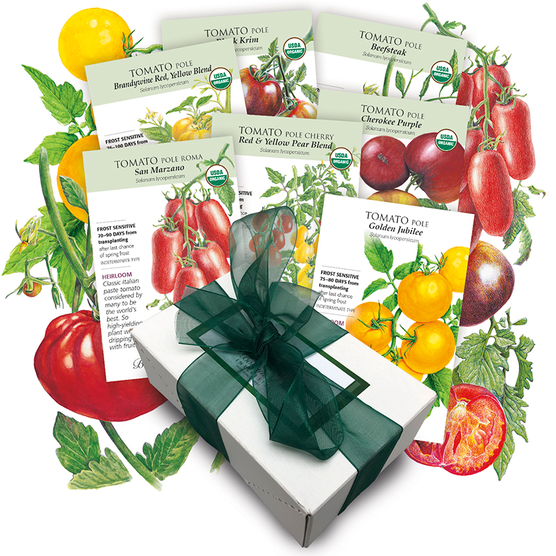 Botanical Interests Heirloom Tomato Seed Collection