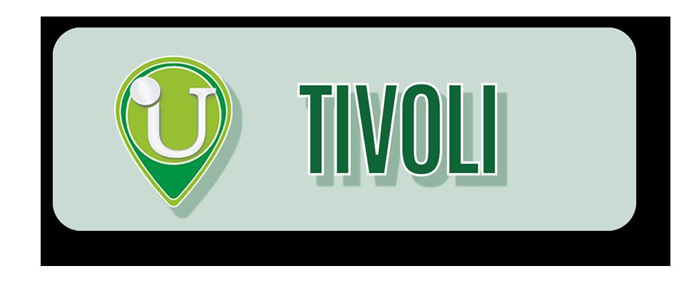 10-Punto-Assistenza-Udisens-Tivoli.png