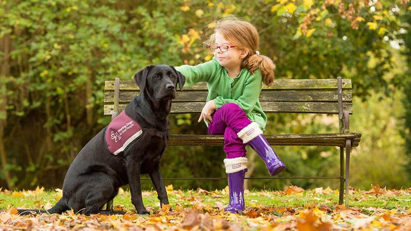 4-cani-hearing-dogs-i-migliori-amici-delle-persone-con-problemi-di-udito-udisens-news.jpg
