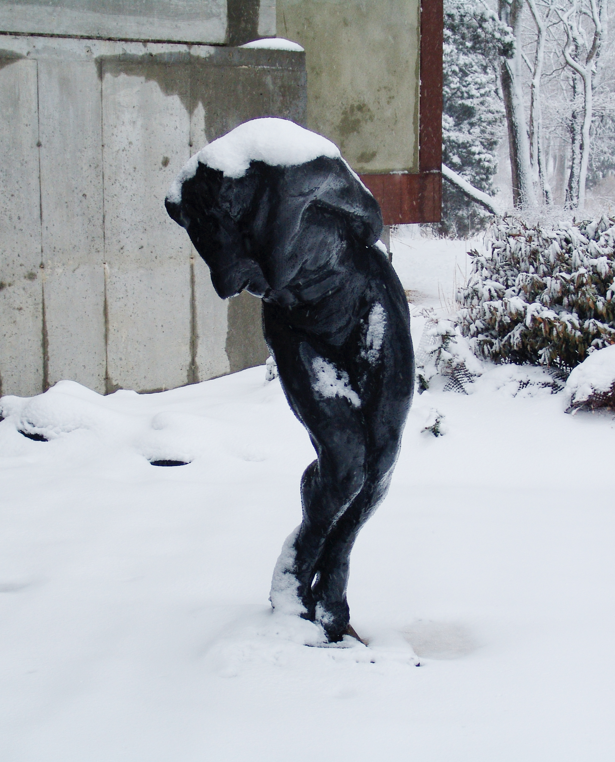 Untitled (Black Female Torso), 2001, Bronze, 60 x 20 x 21 in