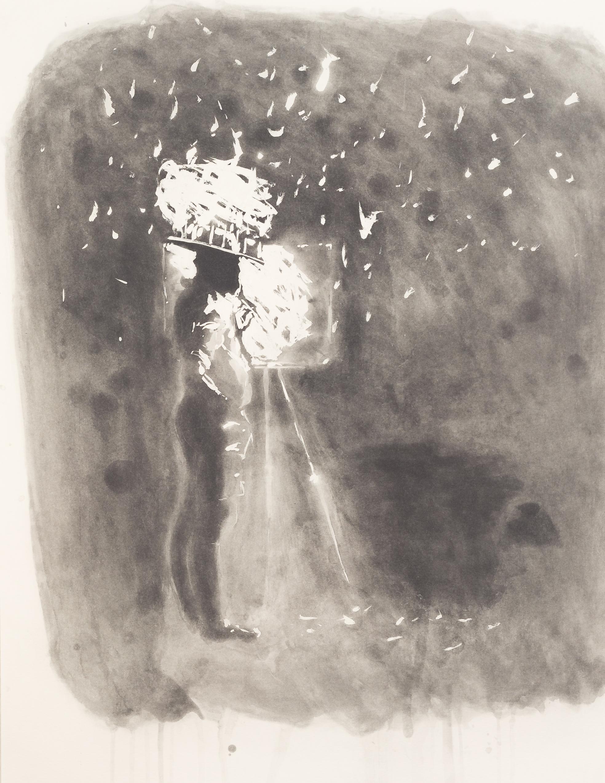"""From """"Vincent, A Delirium"""". 1993"""