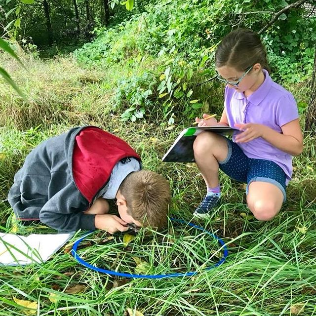 The 3rd-5th graders had a blast today, exploring living and non-living things in science with Mrs. Kutzner! They found a couple of frogs, grasshoppers, ants, and other cool things God created. The temporary rain didn't even phase them!